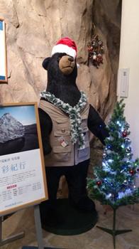 店頭のクマ