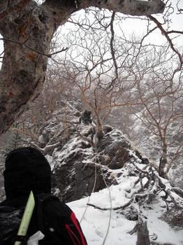 灌木帯のリッジを登る