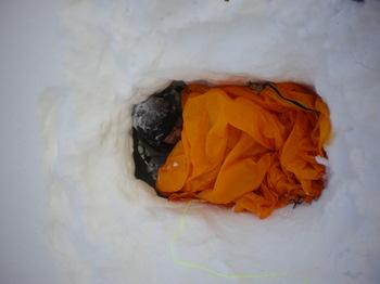 一人用半雪洞